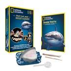 Kit de fouille dents de requins