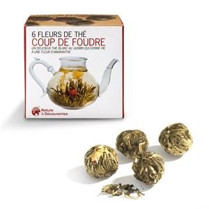 Fleurs de thé coup de foudre   Nature   Découvertes 643062f4bf6