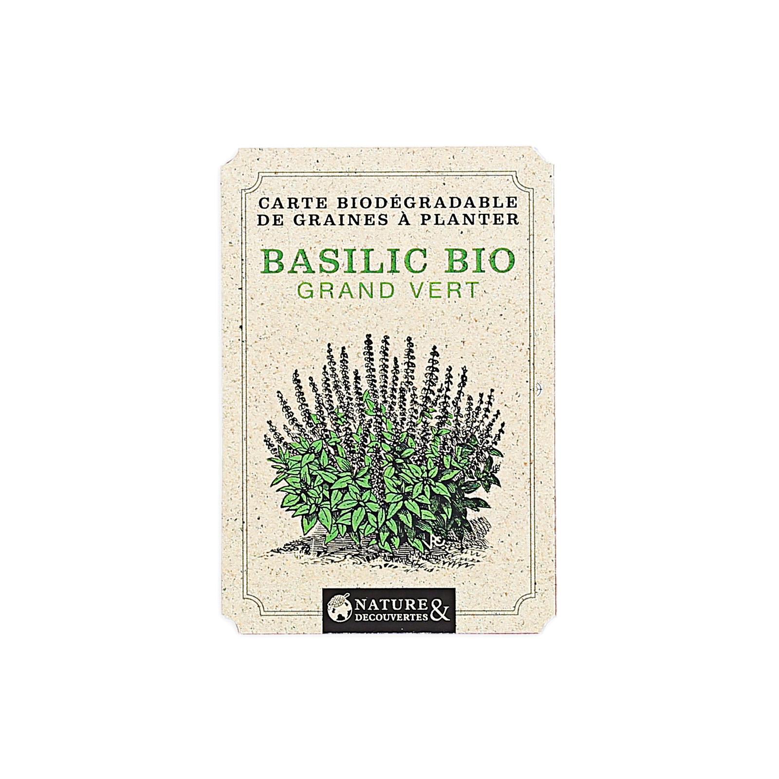 Carte graines basilic bio à planter   Nature & Découvertes