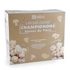 Kit de culture champignons de paris bio