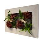 Cadre wallflower m 31x58 cm