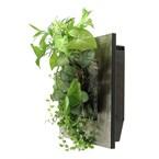 Cadre wallflower s 31x31cm