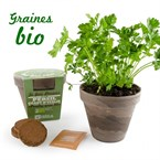 Pot basalte pour persil à feuille plate