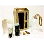 Kit terrarium - bottle l