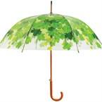 Parapluie sous l'arbre