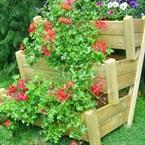 Jardinière escalier 3 bacs bois, ibéris