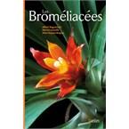 Les broméliacées
